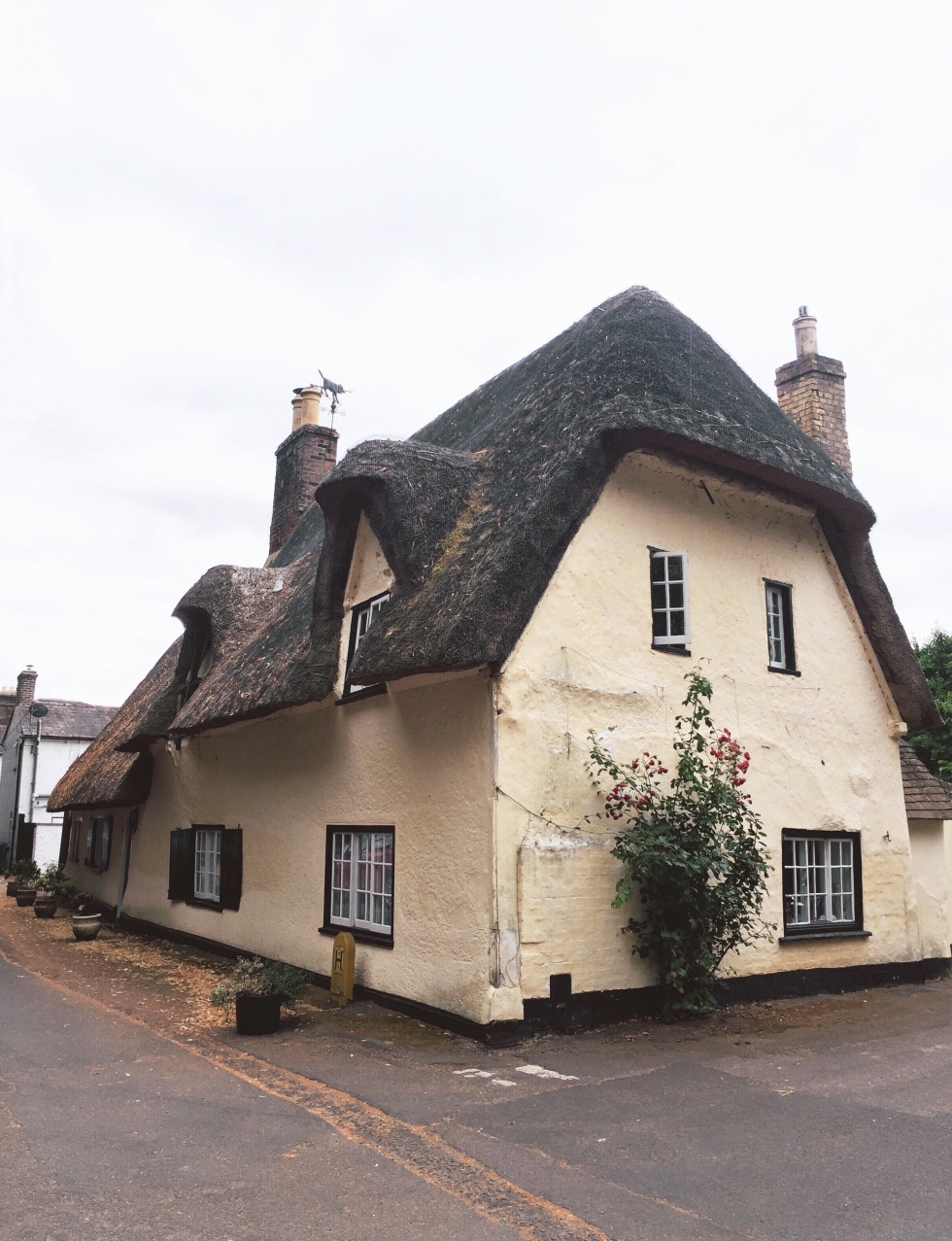A classical yellow thatched house nestled in Cambridgeshire